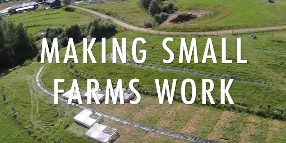 Profitable Permaculture Farms