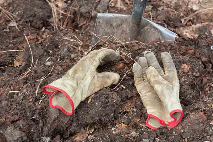Two Worn Gloves Atop Compost Pile by a Shovel